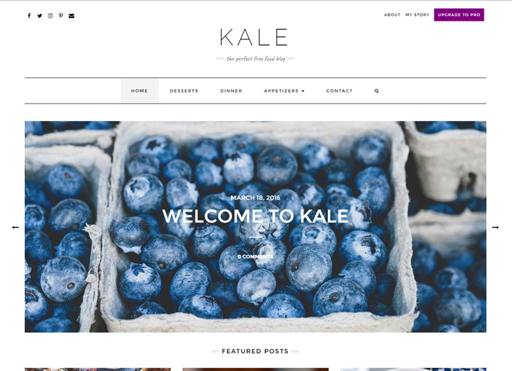 The Perfect Free Food Blog Theme